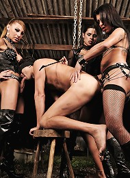 Three ts mistresses of pain in action