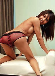 Posh young ladyboy plays with her cock